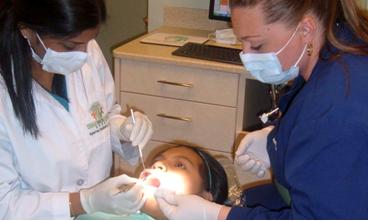 Dental Examinations
